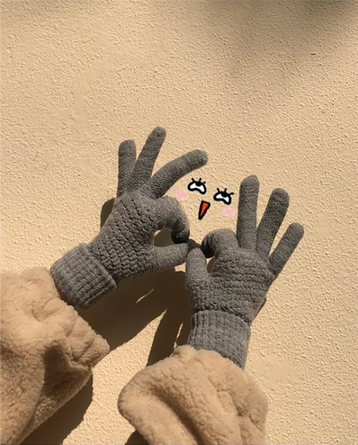 Poggle Touch Gloves